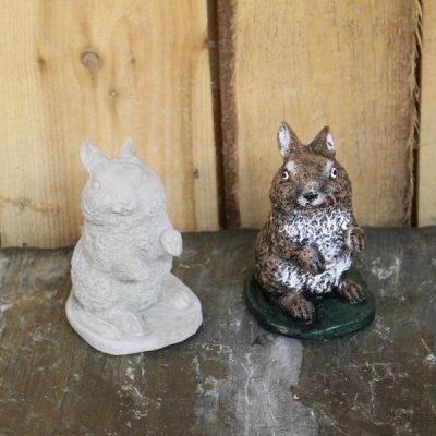 Bunny / Rabbit